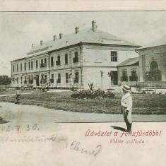 Romania, Salutari Baia Felix, carte postala circulata 1902: Hotel Viktor, animat - Carte Postala Crisana pana la 1904, Fotografie, Baile Felix