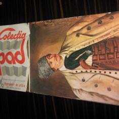 ALBUM VEDERI DE COLECTIE PICTURI 1987