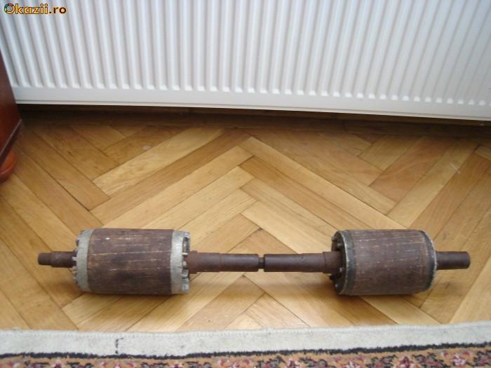 Haltera (haltere)/ gantera (gantere)15 kg foto mare