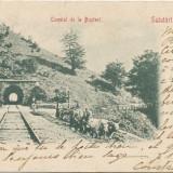 Carti Postale Romania pana la 1904 - CFL 1902 ilustrata Busteni tunelul pt tren si car cu boi