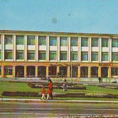 Carti Postale Romania dupa 1918 - S 5853 VICTORIA Magazinul universal CIRCULATA