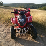 Vand ATV New Force 250 cmc