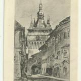 Sighisoara 3 - desen de Trude Schullerus, interbelica, necirculata - Carti Postale Romania dupa 1918, Fotografie