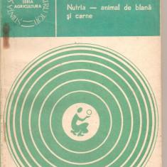 (C2430) NUTRIA ANIMAL DE BLANA SI CARNE DE I. PETRESCU, EDITURA CERES, BUCURESTI, 1982 - Carti Zootehnie