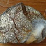 Roca sclipitoare - Fosila roca