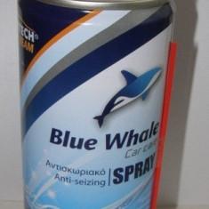 SPRAY ANTIRUGINA SI DEGRIPANT - Spray anticoroziv Auto
