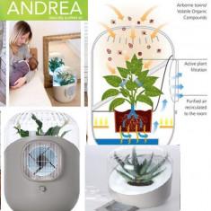 Purificator de aer ecologic ANDREA cu planta naturala