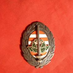 Insigna Academia Militara Ungaria - Vanatori de Munte
