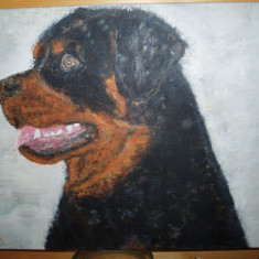 Tablou pictat manual in culori acrilice pe panza (Rottweiler), Animale, Altul