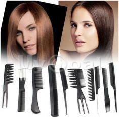 KIT SET 10 PIEPTANI PIEPTAN PIEPTANE FRIZERIE COAFOR PROFESIONALI - Perie de par BeautyUkCosmetics