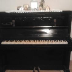 Pianina Altele AUGUST FORSTER