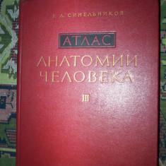 Atlas de anatomie umana(volumul 3)-Sinelnikov