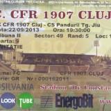 Bilet Meci Invitatie - F.C.  CFR 1907 CLUJ -  CS PANDURII TG. JIU ,  22/09/2013