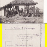 Tigani -militara, razboi, foto WWI, Necirculata, Printata