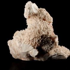 Fosila roca - Zeolith Apophyllite Mordenite ( flori de mina, roci, minerale, cristale )