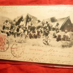 Ilustrata TCV Satra de Tigani, circ. 1900 cu Spic de Grau - Carte Postala Muntenia pana la 1904