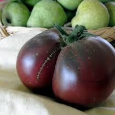 Seminte de rosii - Seminte rosii