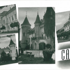 Carti Postale Romania 1904-1918, Necirculata, Fotografie - IPV 603 CAREI