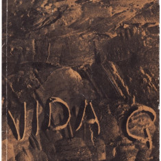 VIDA GHEZA_ALBUM SCULPTURA_ARTISTI ROMANI_de MARIN MIHALACHE - Carte sculptura