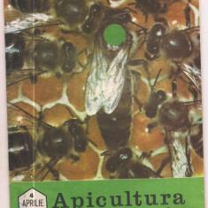Revista/Ziar - 5A(000) revista-APICULTURA IN ROMANIA aprilie 1989