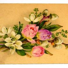 Carte postala - ARTA - Flori de primavara - Matisori - circulata anii 1910-1920 - 2+1 gratis toate produsele la pret fix - RBK4031, Europa, Printata