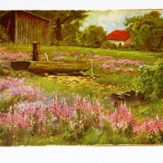 Carte postala - ARTA - NATURA - Peisaj - Casa cu izvor - necirculata anii 1910-1920 - 2+1 gratis toate produsele la pret fix - RBK4042, Europa, Printata