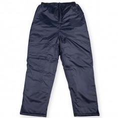 PANTALONI IARNA IMPERMEABILI CAPTUSITI - Pantaloni barbati, Marime: XL, XXL, Culoare: Bleumarin