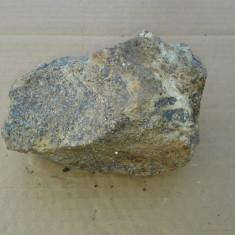 Floare de mina de colectie REDUCERE - Fosila roca, Naturala