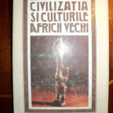 Civilizatia si culturile Africii vechi / Mandics Gyorgy - Istorie
