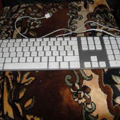 APPLE1243 - Tastatura Apple, Standard, Cu fir, USB