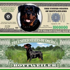 USA 1 Million Dollars Caine Rottweiler UNC