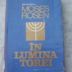 In lumina Torei - Carti Iudaism