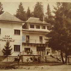 Stana de Vale, Biharfured - Piesa de colectie ! - Carte Postala Transilvania dupa 1918, Circulata