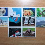 Stikere animale Billa, 10 bucati - Colectii