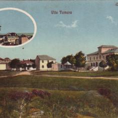 Romania, Movila carte postala necirculata: Vila Tamara, minaret - Carte Postala Dobrogea pana la 1904, Eforie, Fotografie