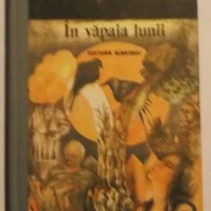 Fanus Neagu - In vapaia lunii (1988) - Roman