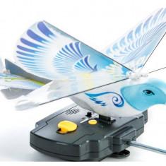 porumbel  zburator cu telecomanda