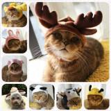 Caciulita pt. catel pisicuta caciula caine pisica caini catei pisici +CADOU!