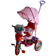 Tricicleta copii DHS Baby - Tricicleta Merry Ride Roz