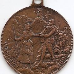 Medalie Wandern 45 mm (MC-63), Europa, An: 1894