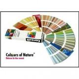 Pigment pentru colorare tencuiala - PURPURIU 01