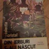 Din Ierburi S-au Nascut Medicamentele - Emanoil Grigorescu, 528430 - Carte tratamente naturiste