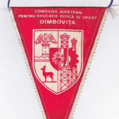 Fanion Consiliul Judetean Educatie Fizica si Sport DIMBOVITA