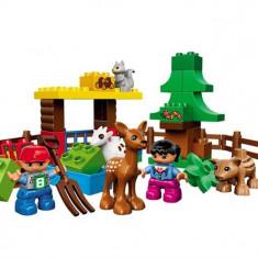 Animalele Din Padure Lego Duplo (10582)