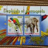 Timbre straine, Stampilat - 2 colite stampilate papagali si elefanti, 2008, Benin
