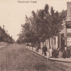 FOCSANI, BULEVARD KAROL, MAGAZIN COLONIALE, DELICATESE, APERITIVE, STEFAN B - Carte Postala Moldova dupa 1918, Necirculata, Printata