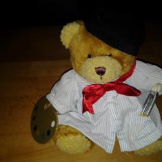 NO. 85 Pictorul Teddy Bear Altele