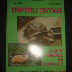 Carte Biologie - IOAN BUD - BROASTELE TESTOASE SI ALTE ANIMALE DE COMPANIE