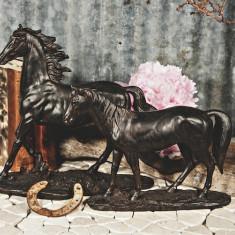Statueta Cal