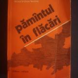 I. I. IAKUBOVSKI - PAMANTUL IN FLACARI - Roman